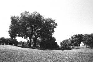 Jenner's Park, Loup City, Nebraska, 1900-1942